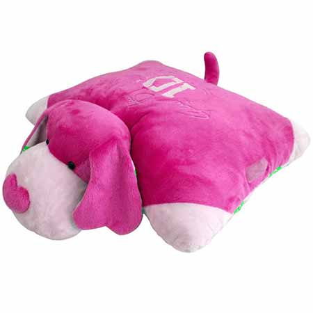 بالش پیلوپت pillow pet